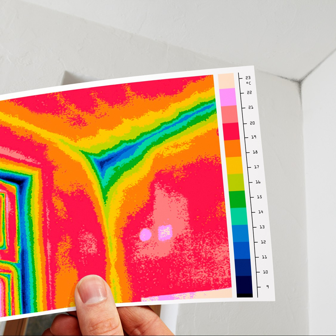 Thermographie infrarouge et moississure